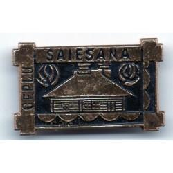 Latvian soviet stick pin Cepļu Saiešana