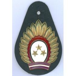 Latvian national guard`s badge