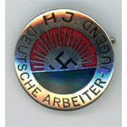 WWII German YOUTH  pin