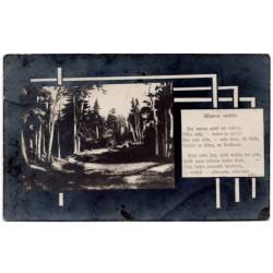 Vintage postcard 1911